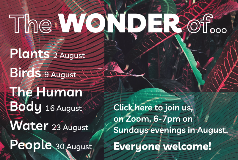 The Wonder Of... Plants; Birds; The Human Body; Water; People. Join us online on Sunday evenings in August from 6pm. Click here to access the link to Zoom.
